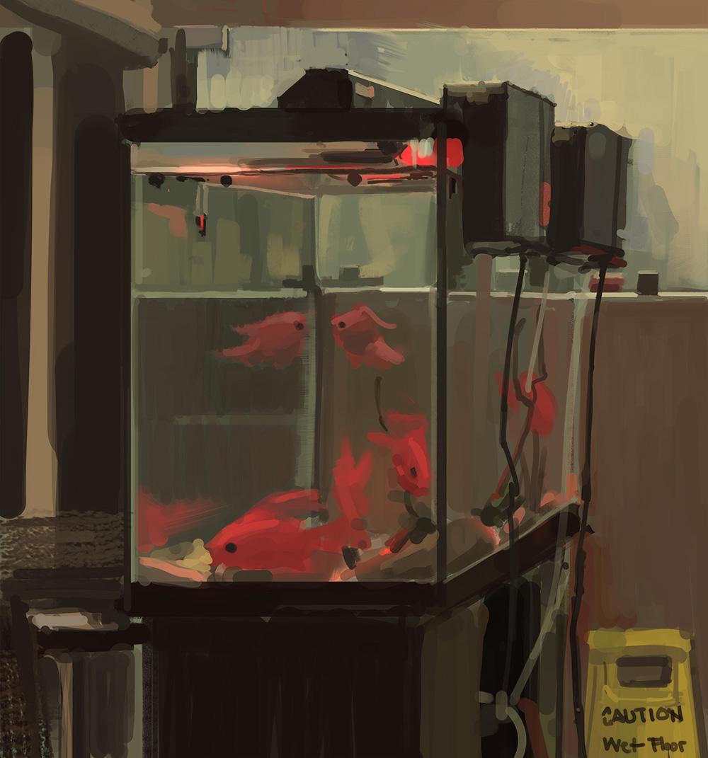 2017.12.27_fish tank